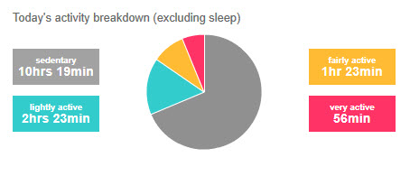 110905 Activity Pie Chart