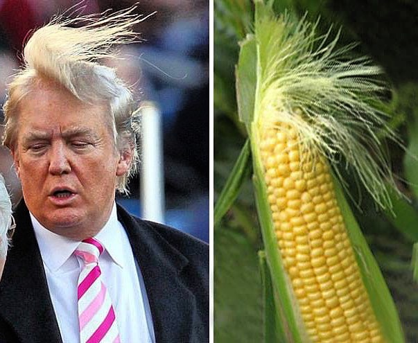 151004 A Trump - Who Wore It Better Challenge