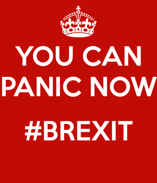 You-can-panic-now-brexit