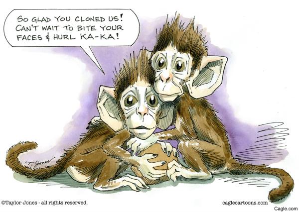 1262018 Monkey clones